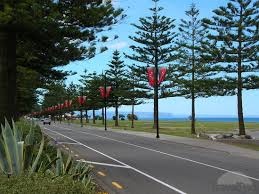 Amazing things are on the cards for Napiers Marine Parade